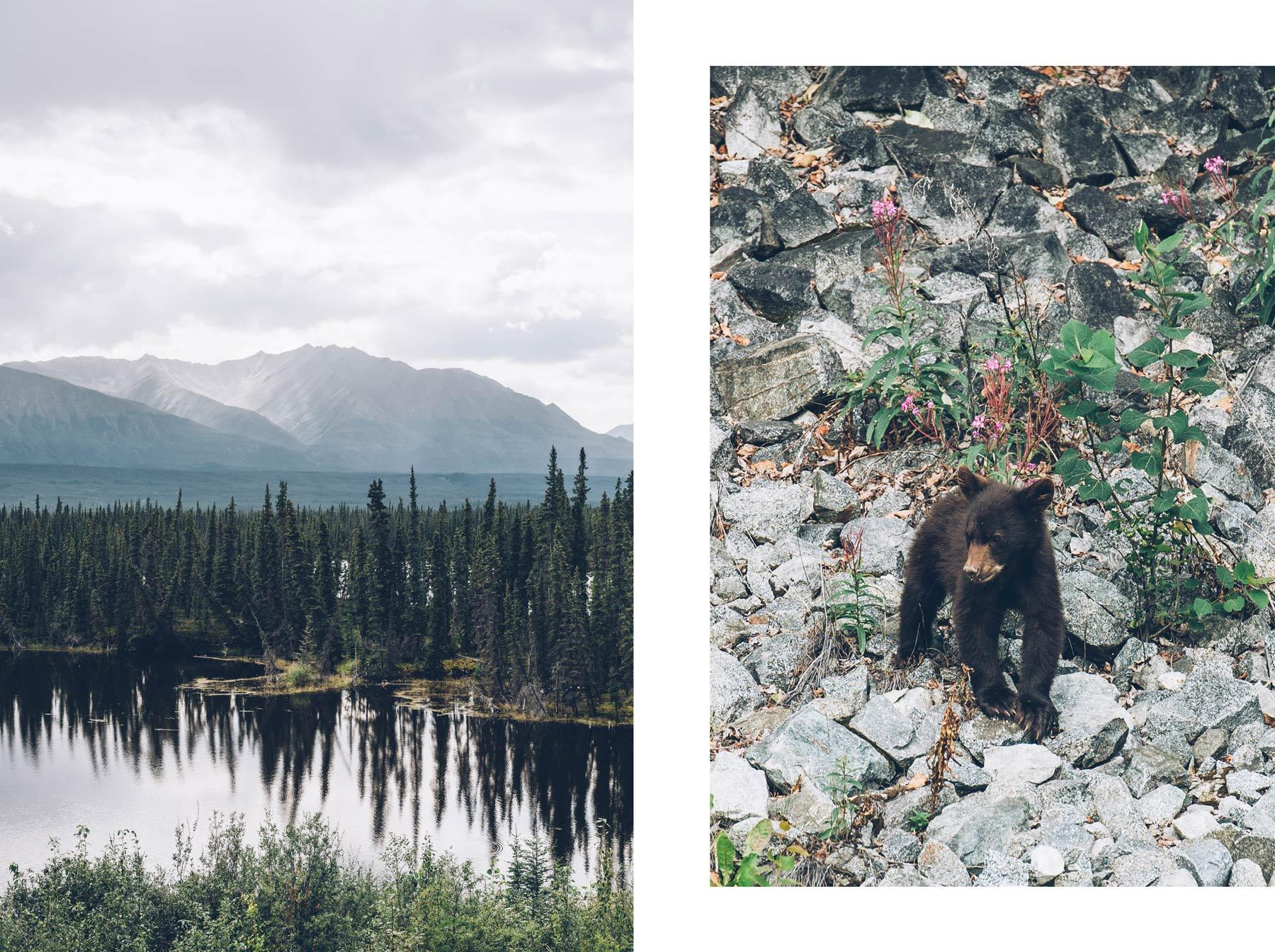 Le plus beau moment du voyage au Yukon