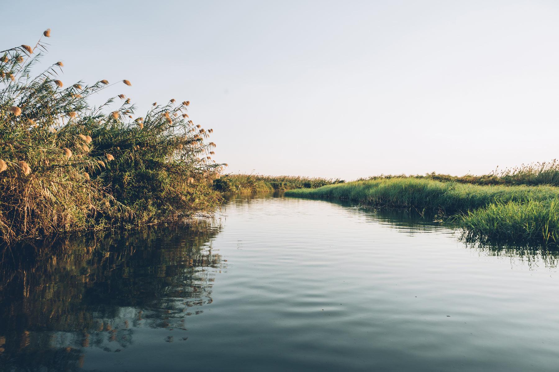 Fleuve Chobe