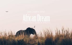 UN SAFARI-CROISIÈRE DE RÊVE AU CŒUR DE L'AFRIQUE AUSTRALE