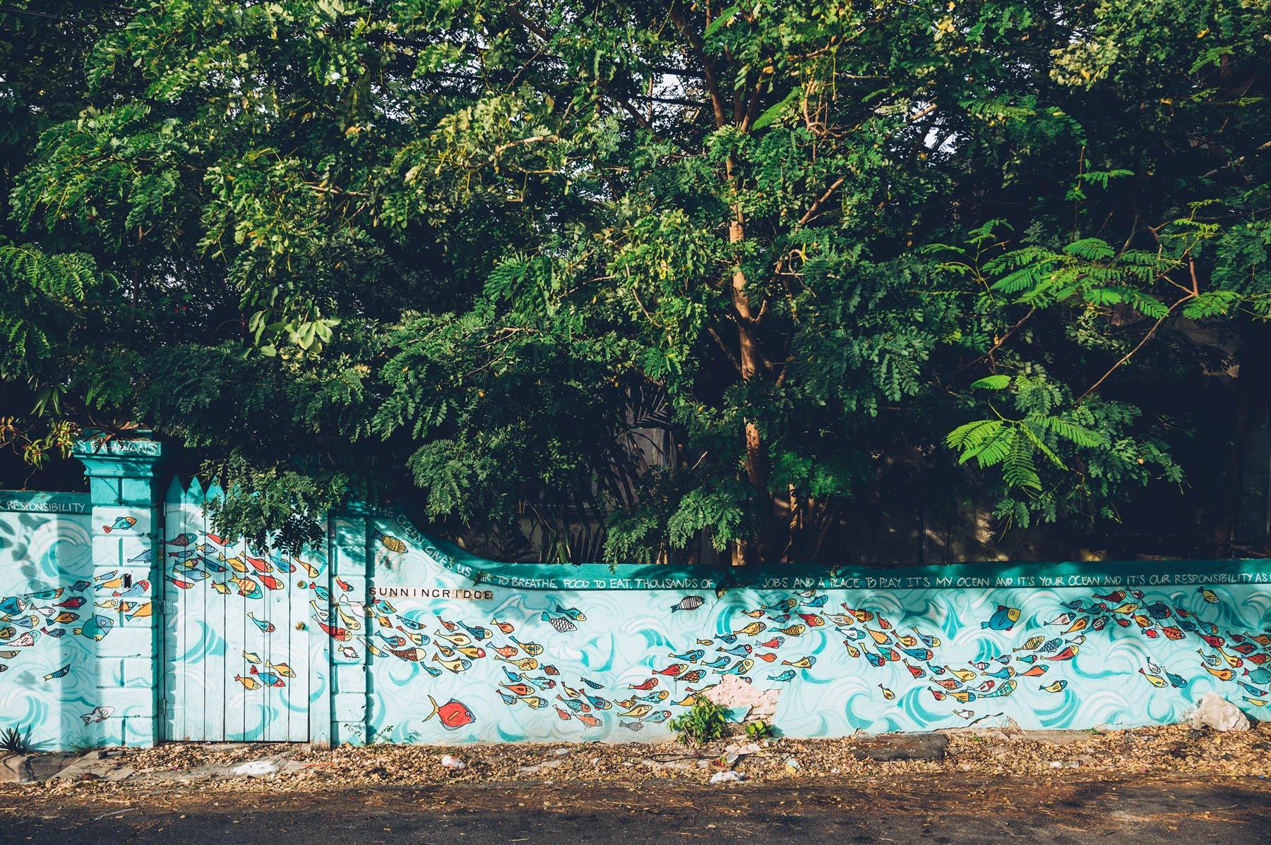 Street Art Nassau, bahamas