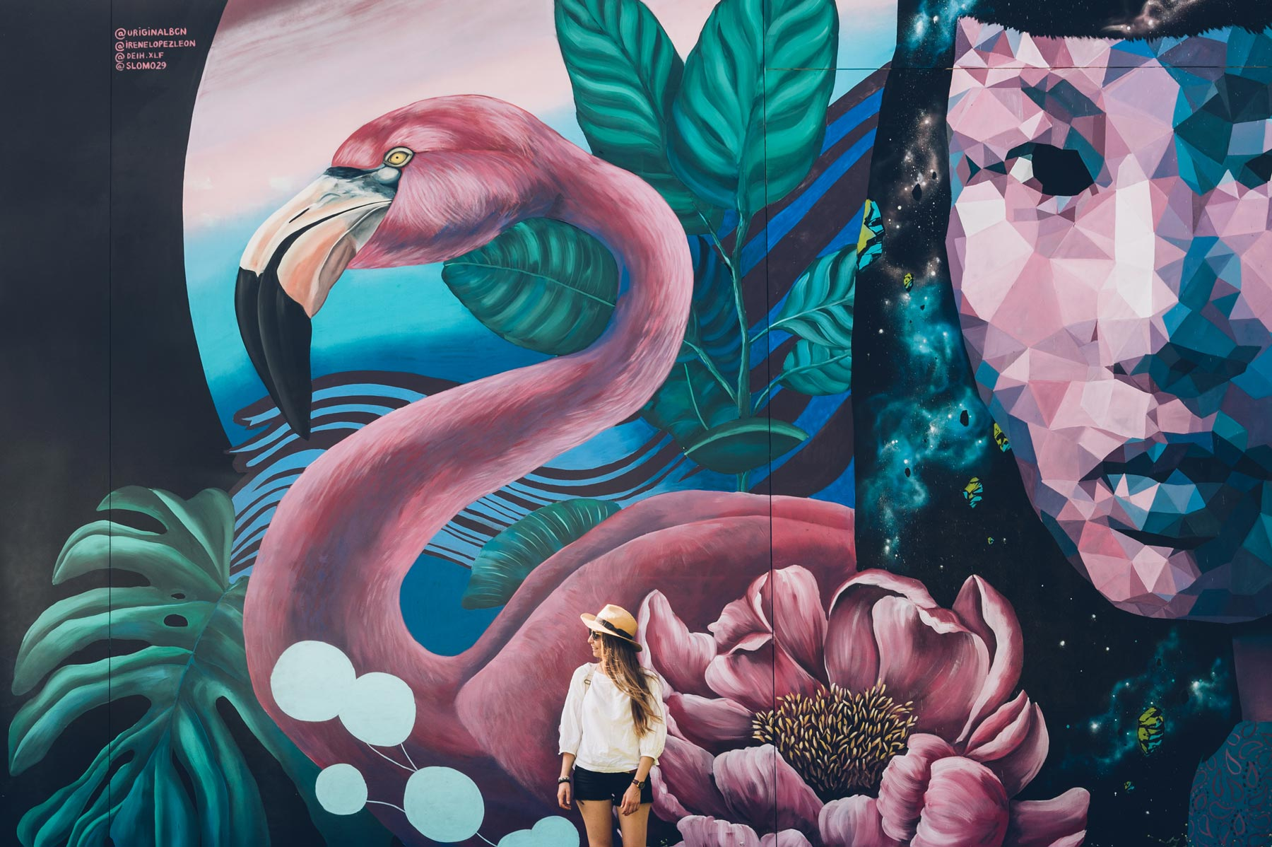 Flamants Rose, Street Art Miami, Wynwood