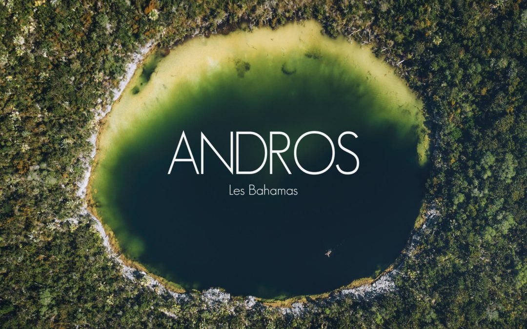 BAHAMAS | ANDROS, L'ILE SAUVAGE