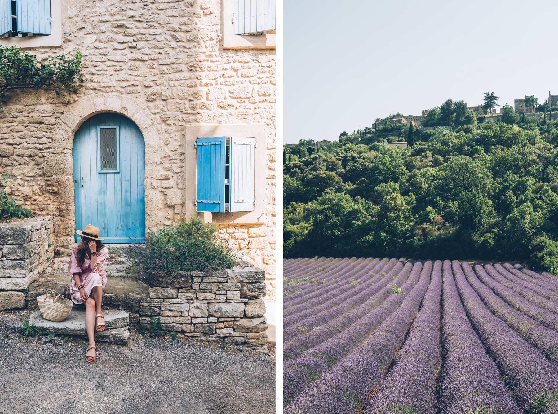 Saignon, Lavande en Provence