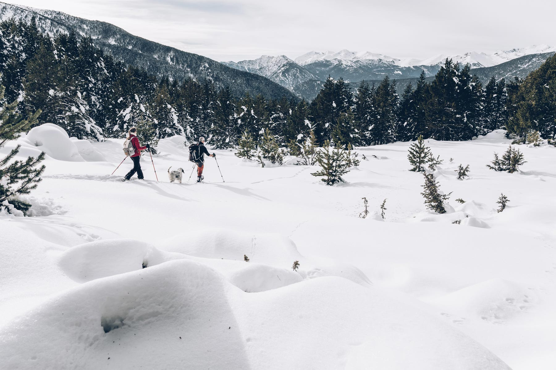 Raquettes, Andorre