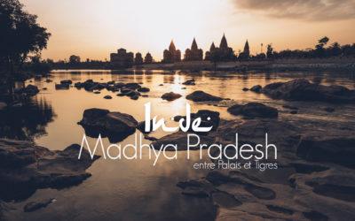 MADHYA PRADESH | 12 JOURS AU COEUR DE L'INDE ENTRE PALAIS ET TIGRES