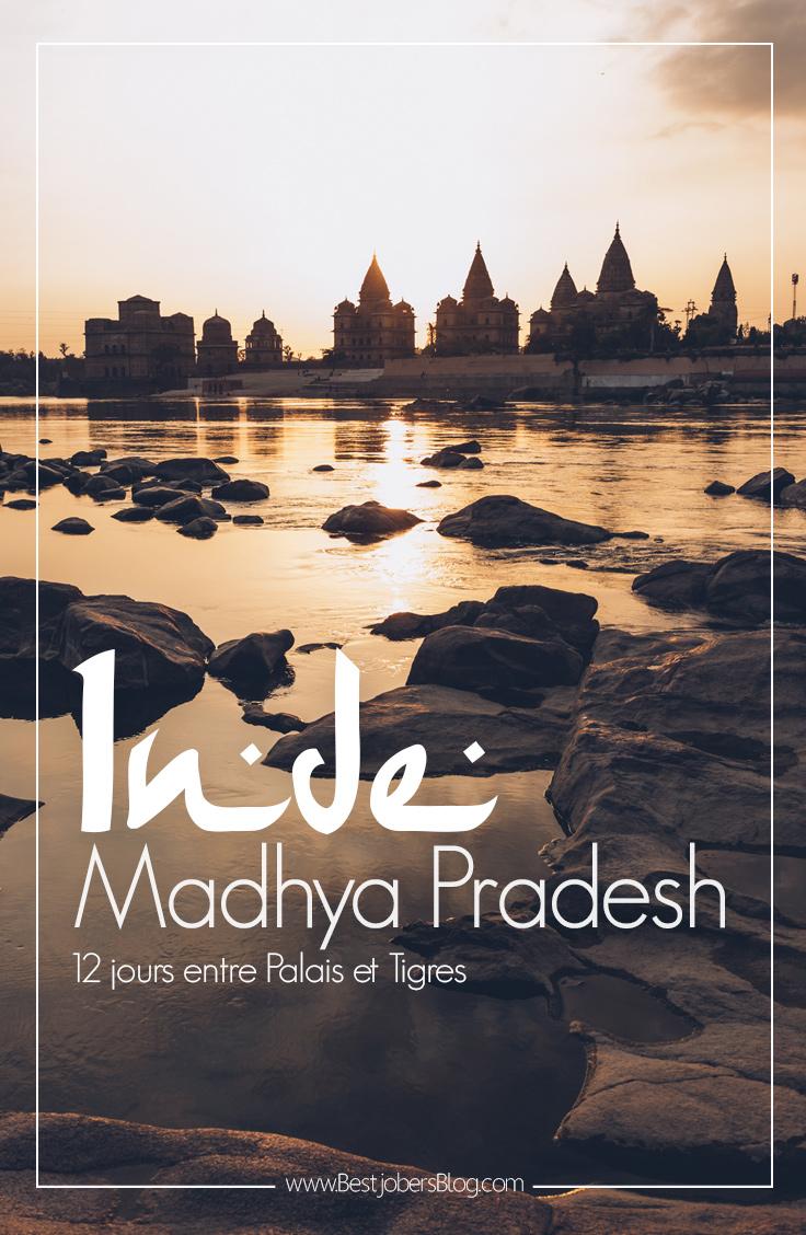 12 jours au coeur de l'Inde entre temples et tigres