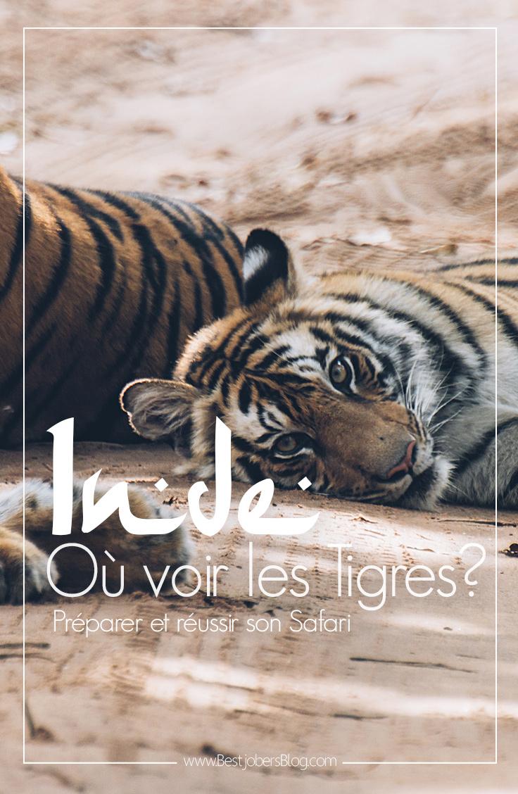 Où voir les tigres en Inde? Nos infos et conseils