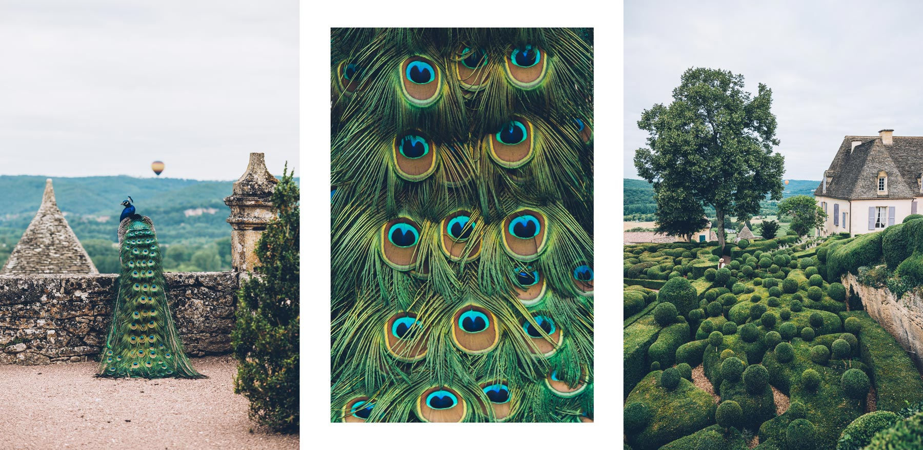 Le beau jardin de Marqueyssac