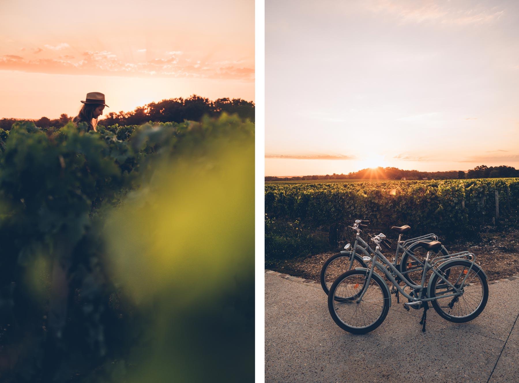 Vélo dans les vignes, près de Caudalie