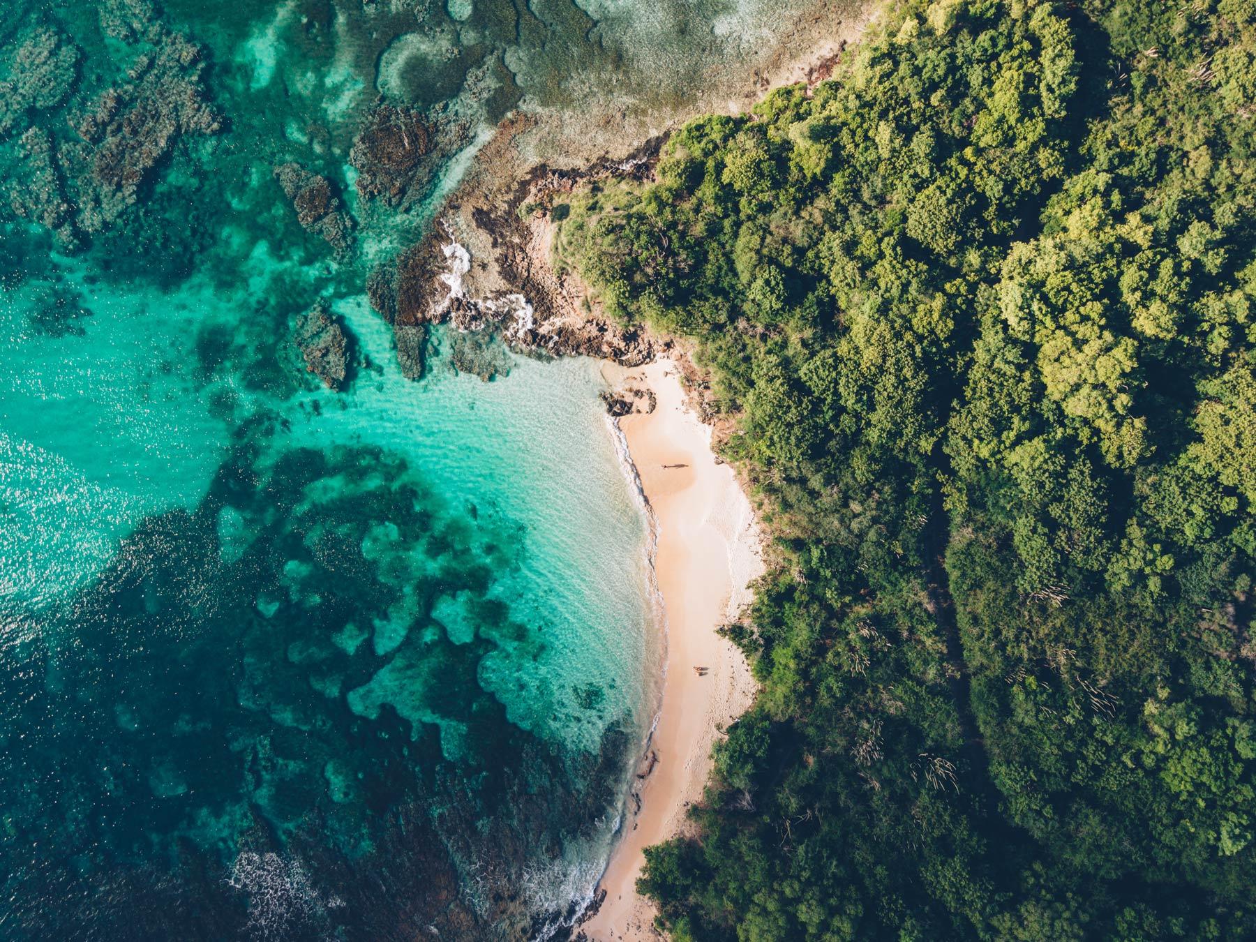 Crique aux Salines, Martinique