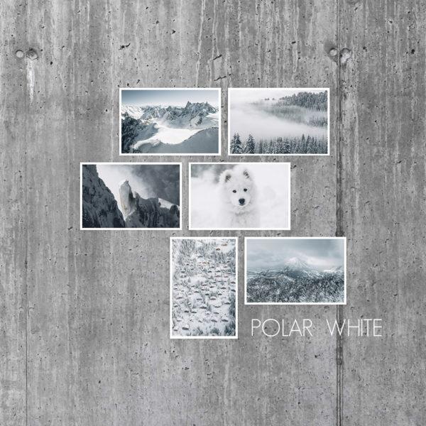 Cartes Polar White