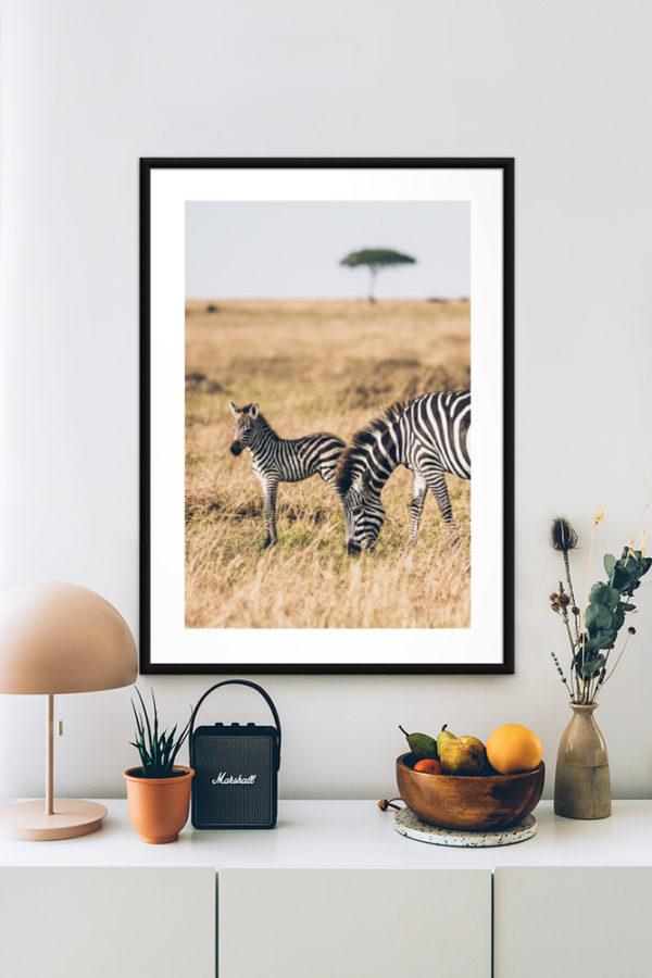 Tirage d'art, Stripes Zebras