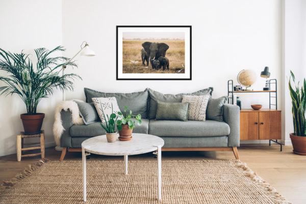 Tirage papier d'art, Elephants