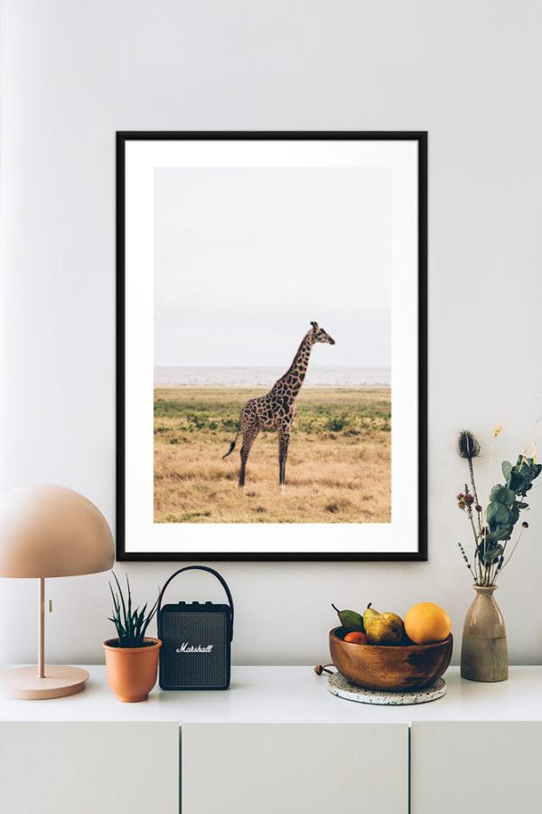 Tirage sur papier d'art, Girafe
