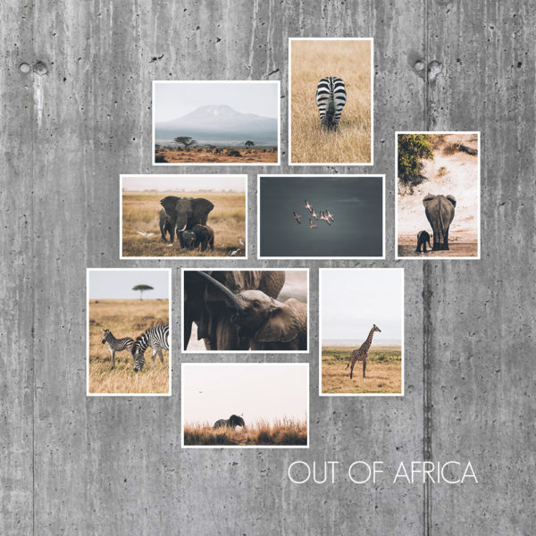 Cartes Out Of Africa