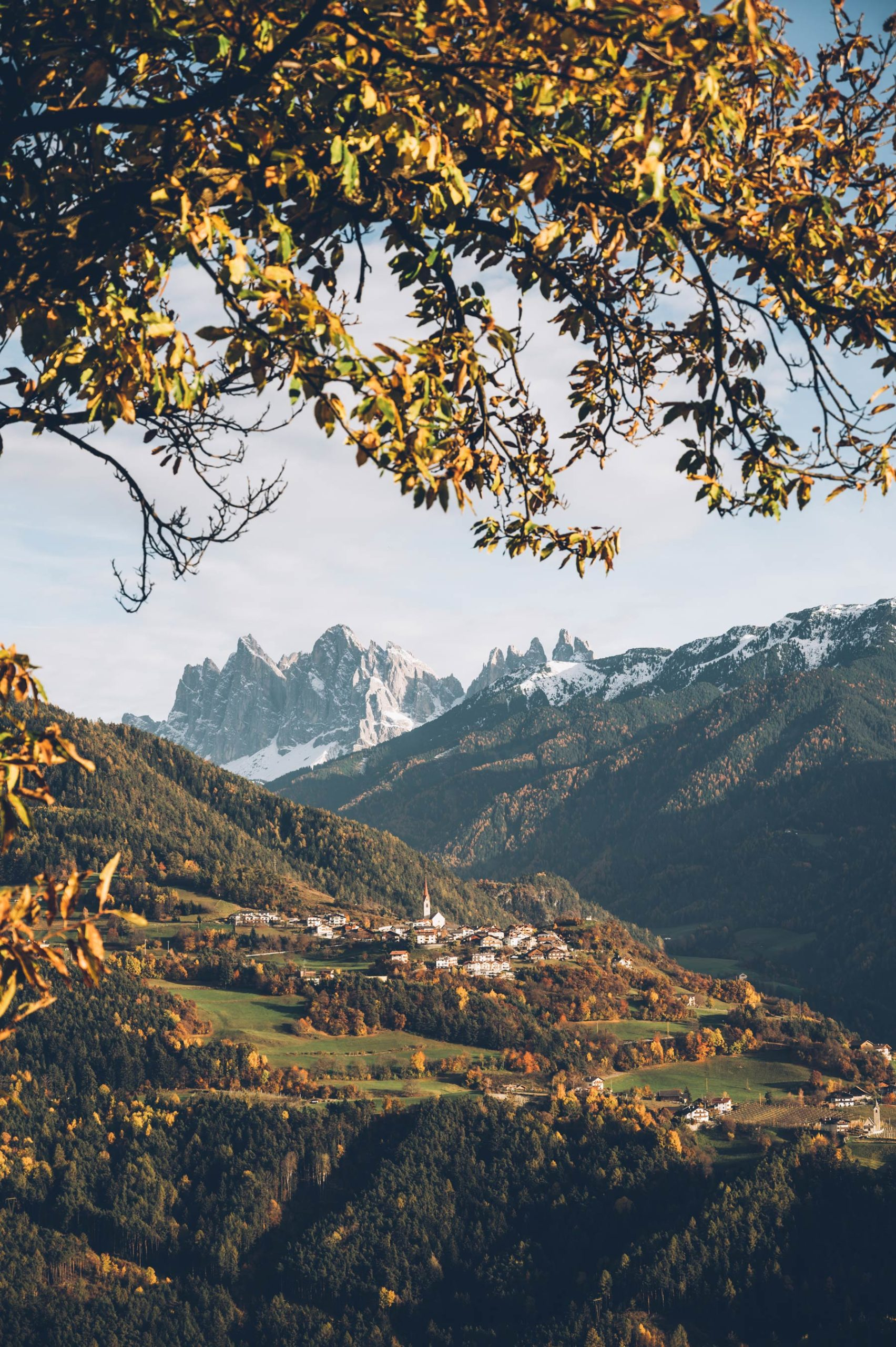Vue depuis le sentier des châtaignes, Sud Tyrol