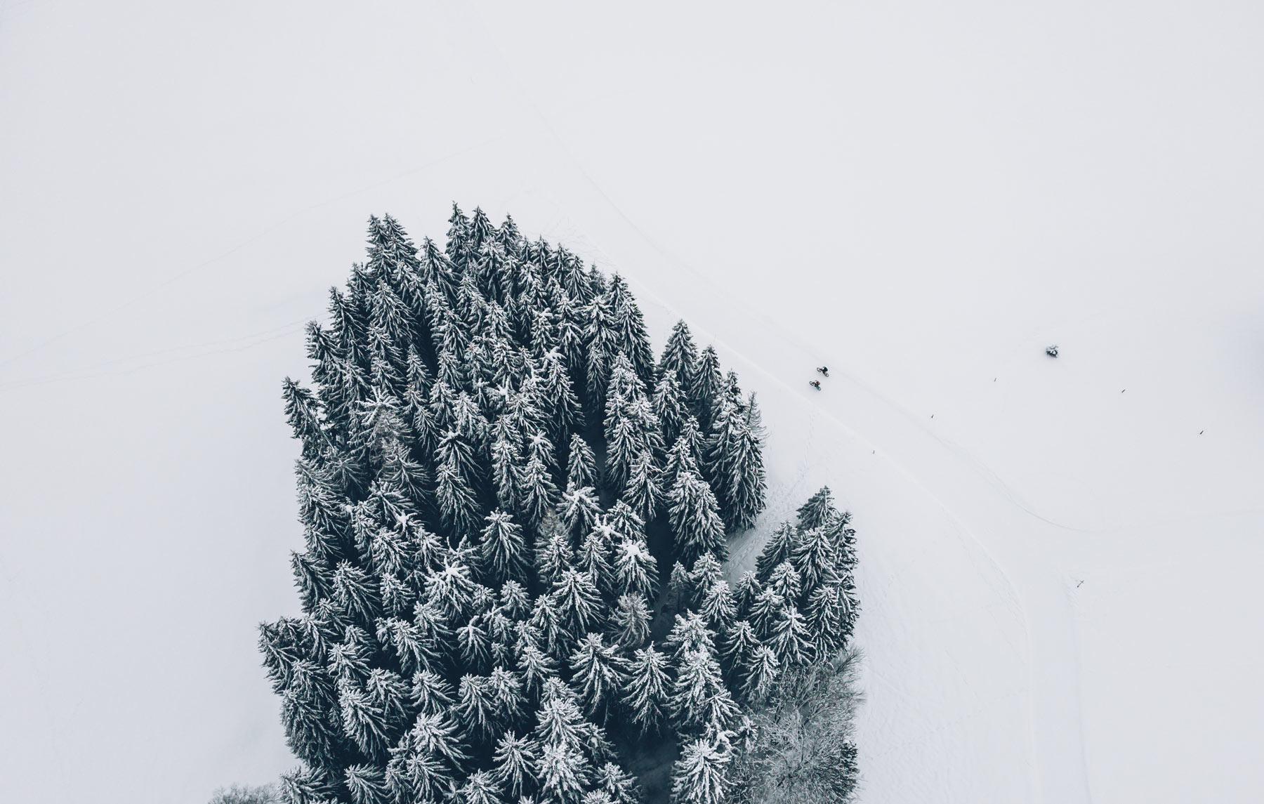 VTT sur neige, Metabief