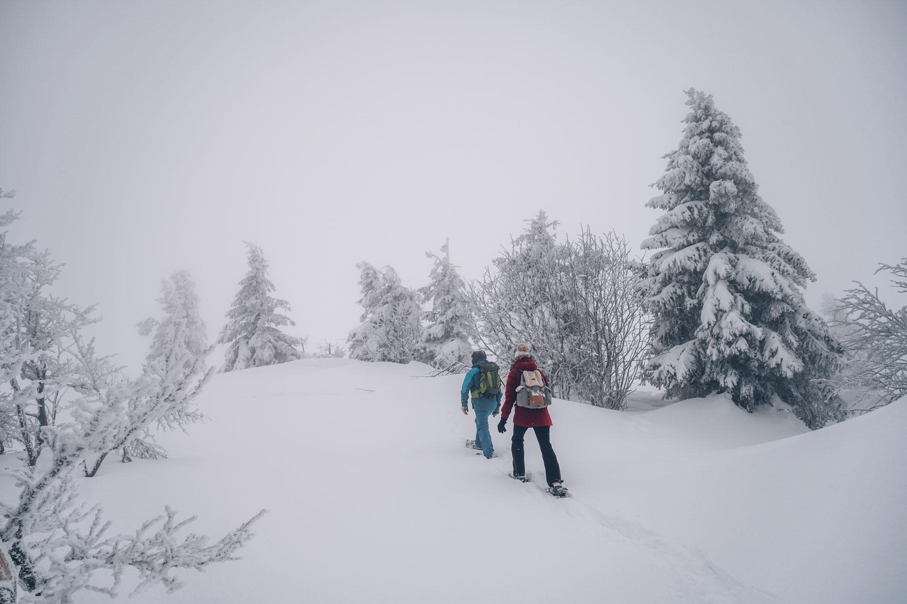 Sortie Raquettes avec Matthieu dans les Vosges