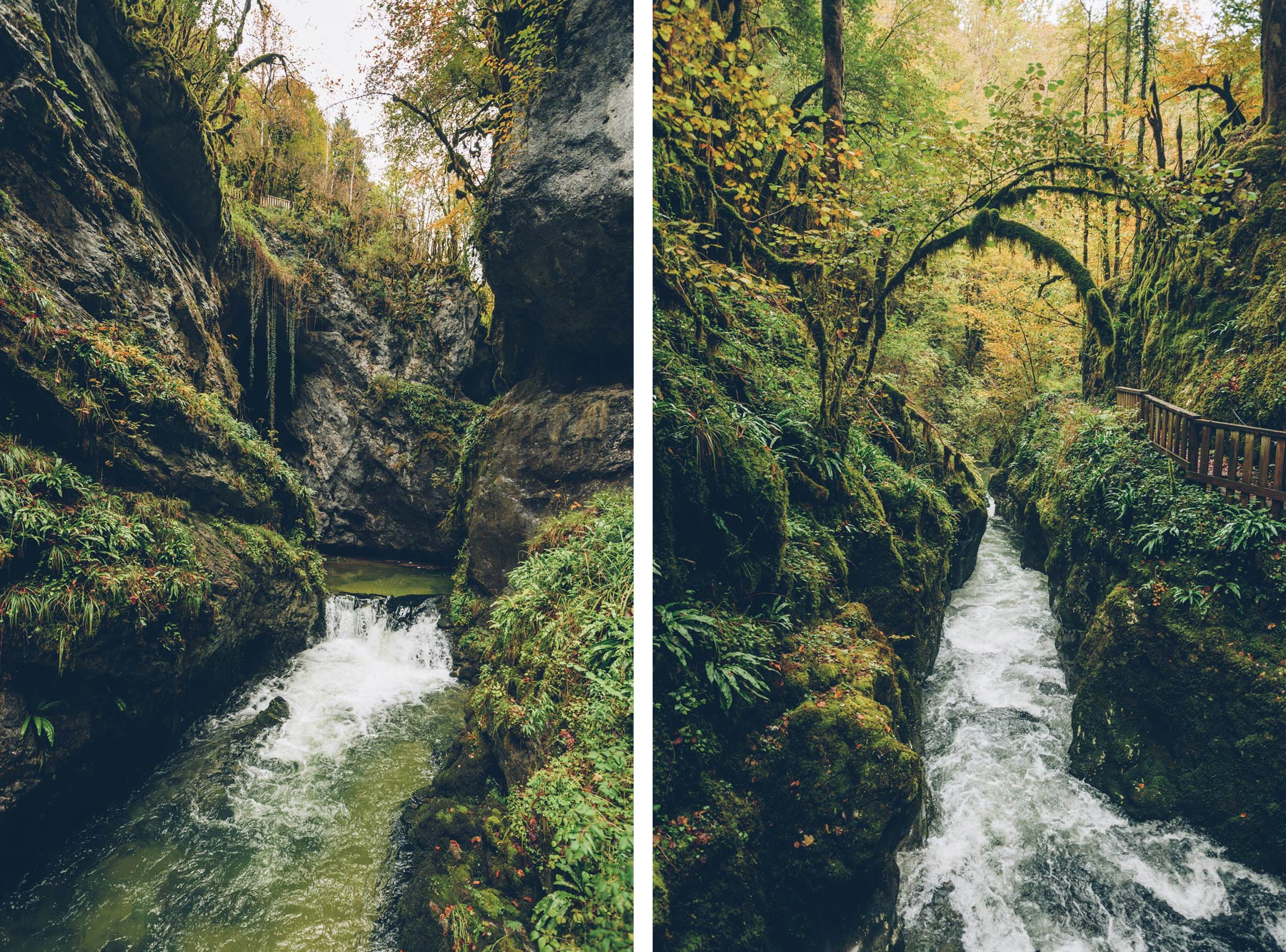 Gorges de l'Abime, Jura