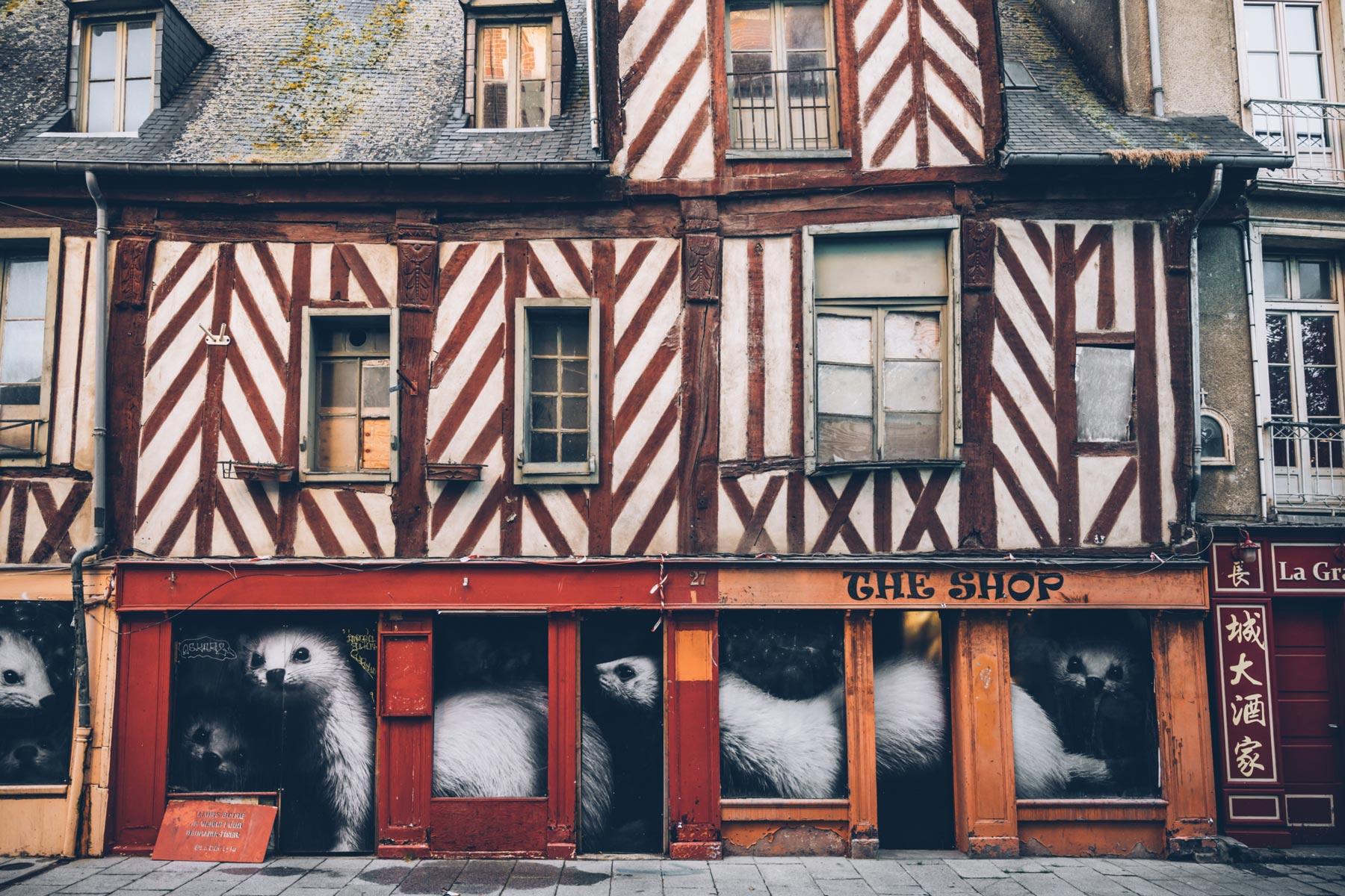 Rennes et ses hermines