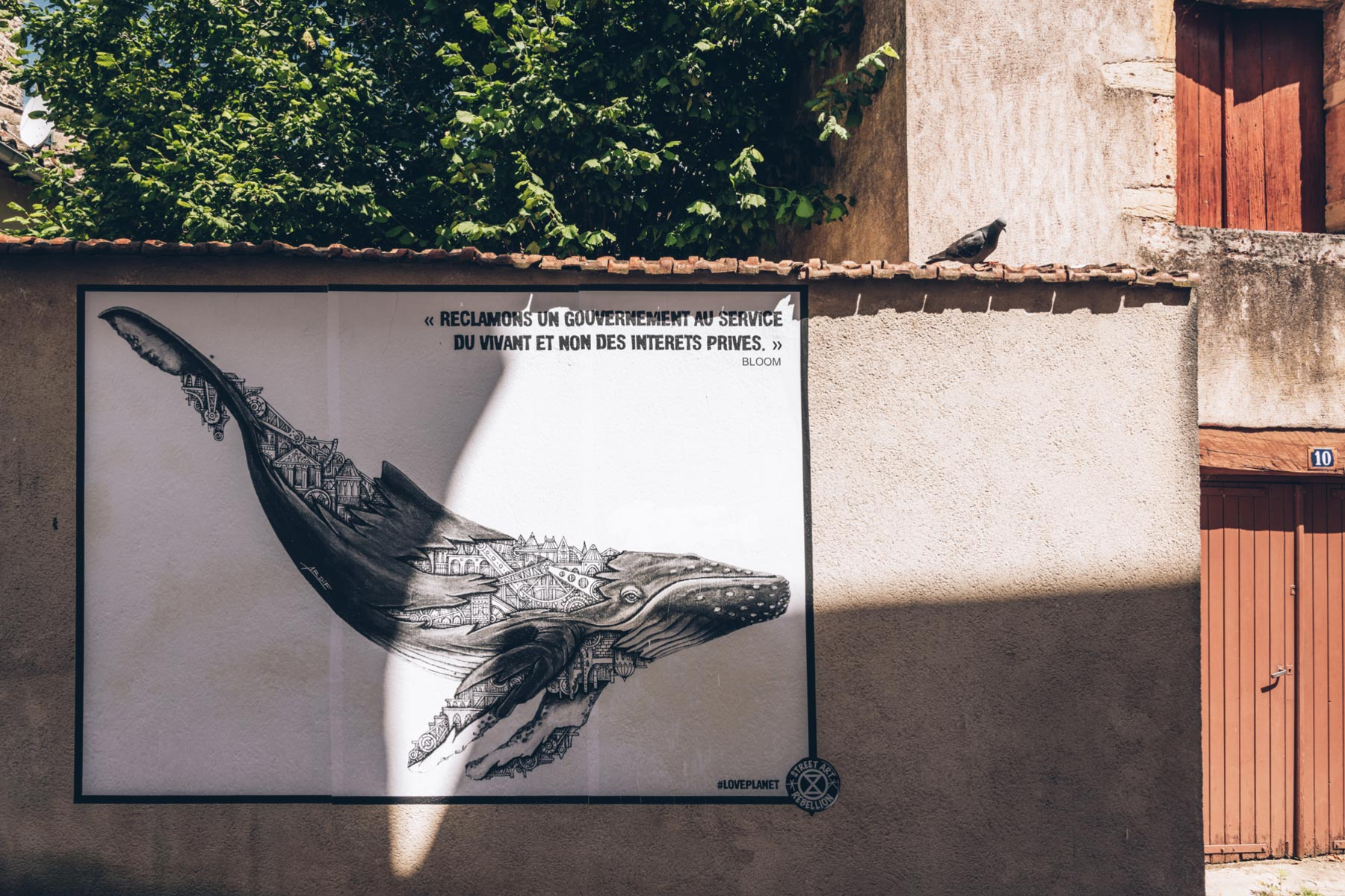 Street Art Tournus, Saône et Loire