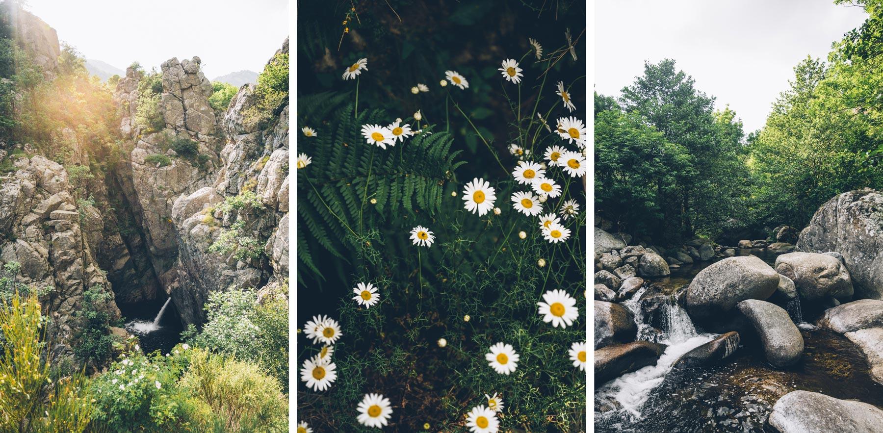 cascade de la Pissarelle