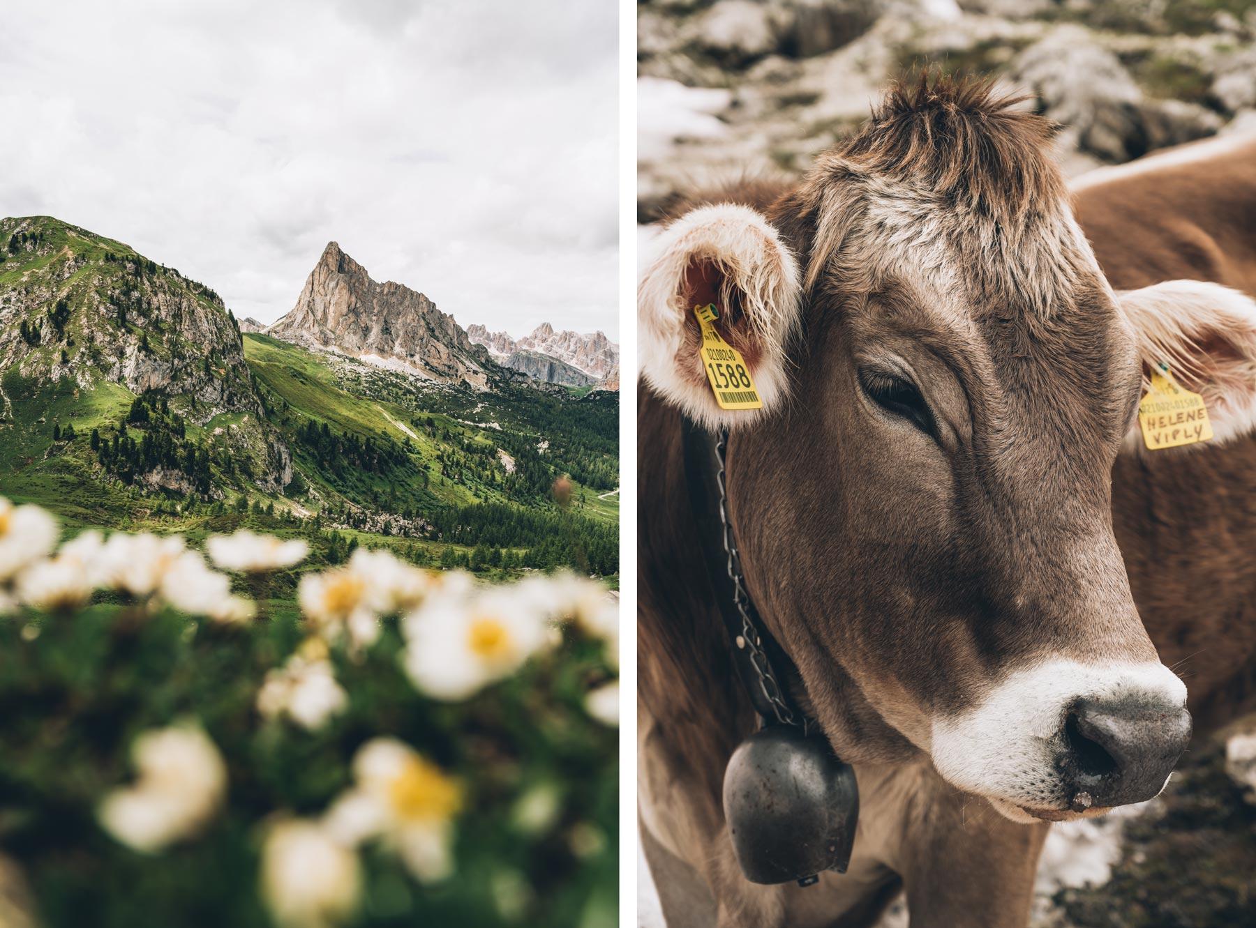 Rando Dolomites, Blog Voyage