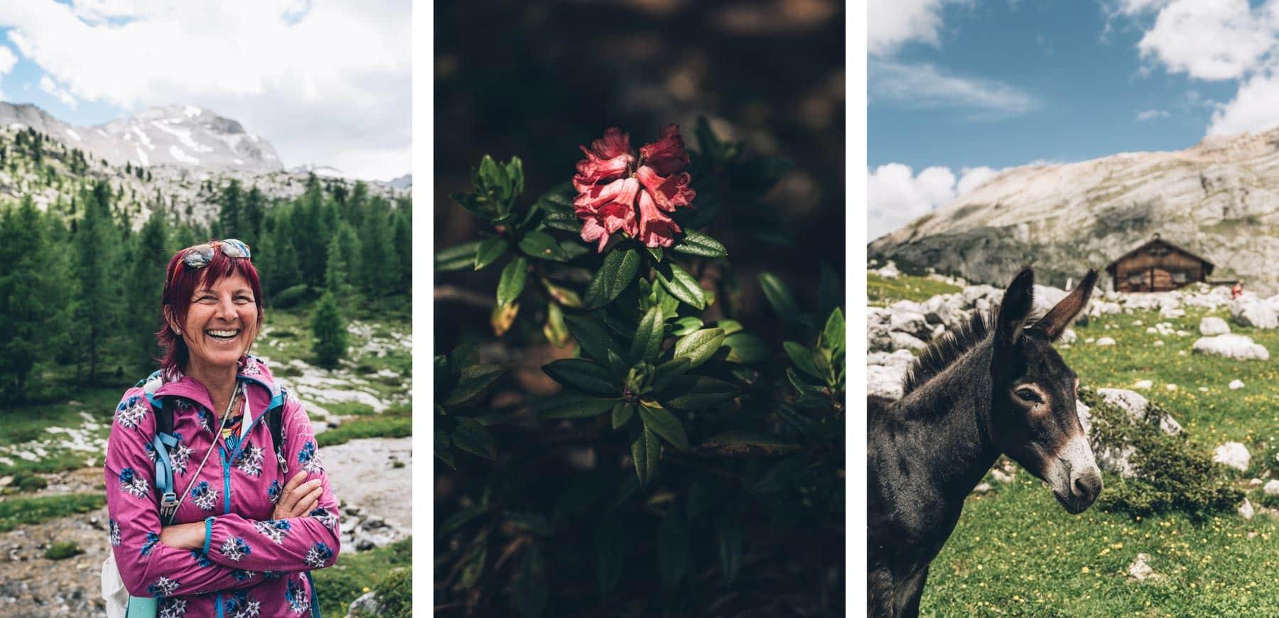 Guide de Montagne en Français, Dolomite