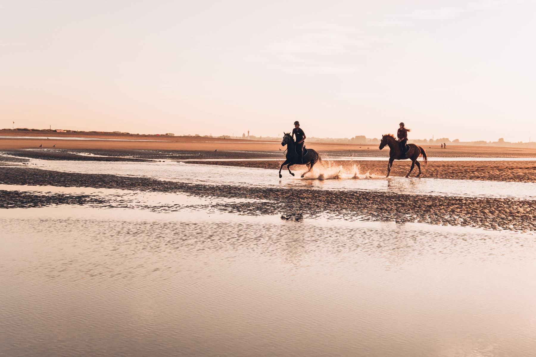Balade à cheval sur la plage en Normandie